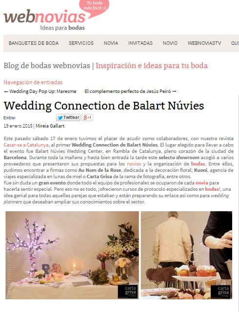 webnovias wedding connection